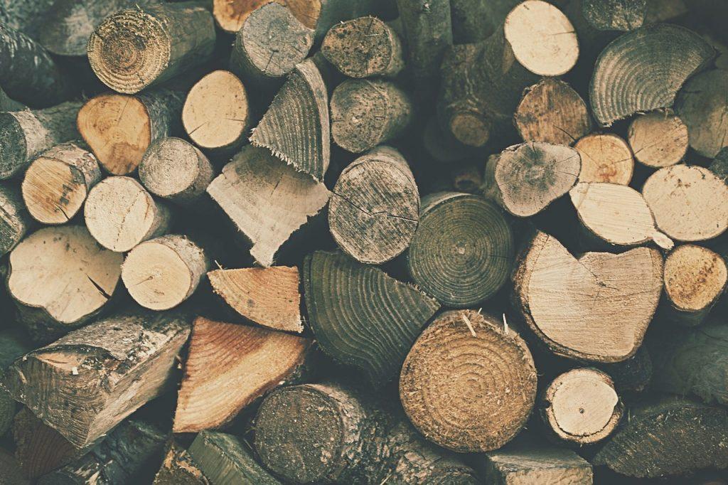 Obnovljivi viri - biomasa