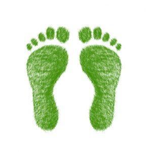zelena pisarna_ogljicni odtis