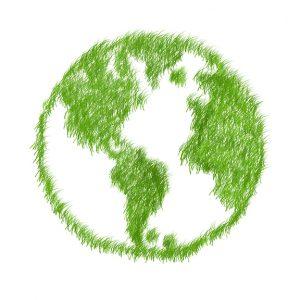 zelena pisarna_svet