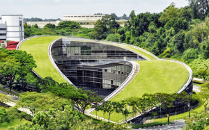 Nanyang Technological University zelena streha
