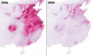 onesnazenost-kitajska_2019_2020